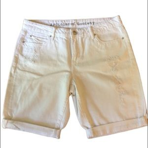 NWOT Articles of Society boyfriend shorts
